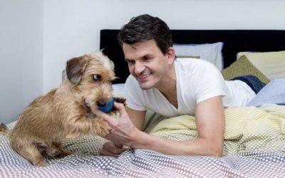 De hond van: Maurice